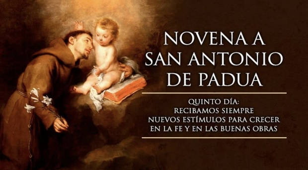 Festividad de San Antonio (5)