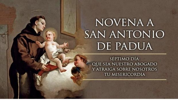 Festividad de San Antonio (7)